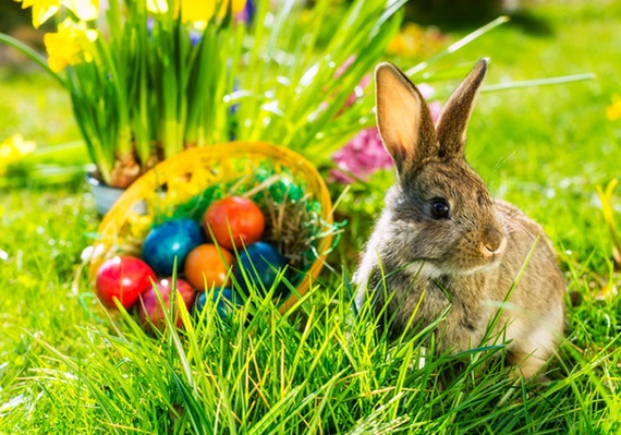 easter-holiday 17