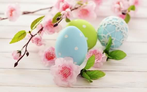 amazing colorful easter eggs for easter day, amazing colorful easter eggs , colorful easter eggs for easter day, eggs for easter day, easter day, easter,,eggs