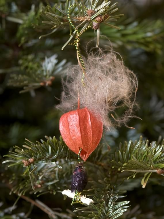 Using Spices & Dried Fruits For Christmas Decorations , Using Spices & Dried Fruits For Christmas , Using Spices & Dried Fruits , Christmas Decorations , Using Spices & Dried Fruits , Christmas , Decorations , Spices , Dried Fruits